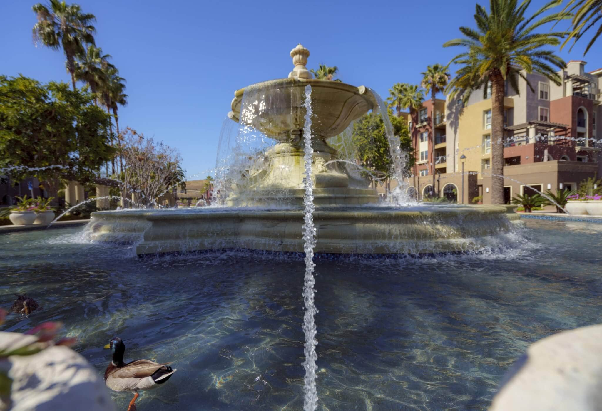fountain in Mission Valley, CA